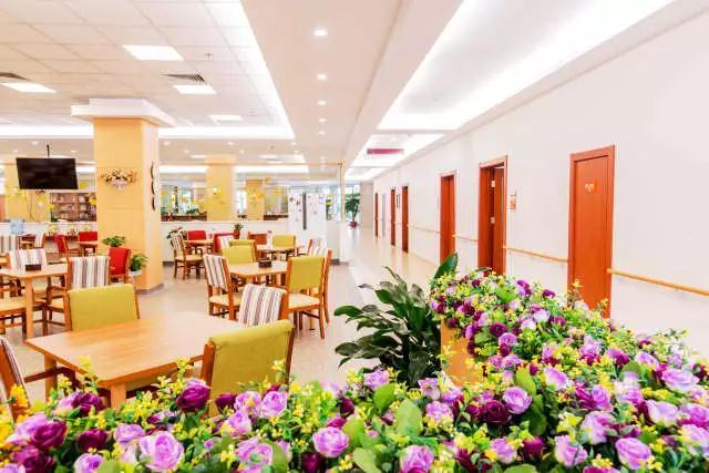北京市高端养老院越吃越长寿的膳食秘密